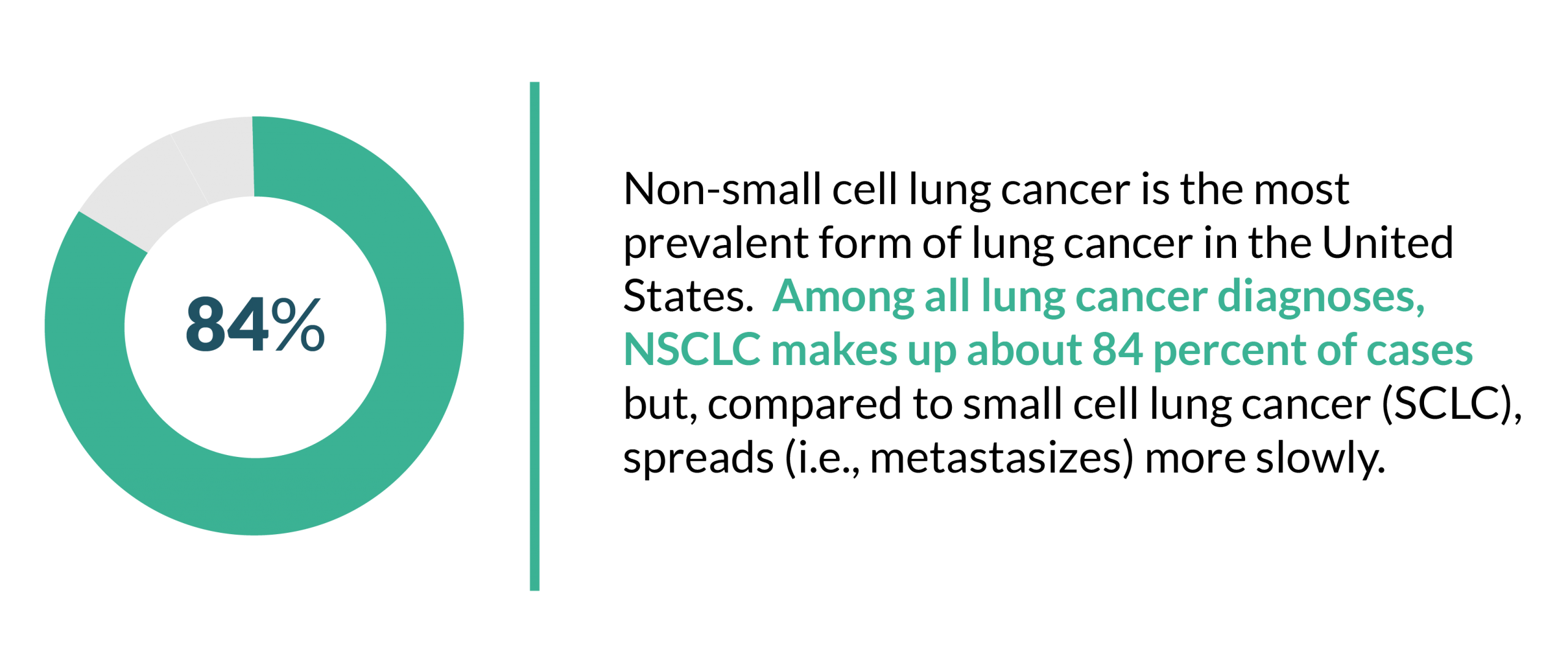 This is a graphic displaying that Non-Small Cell Lung Cancer takes up 84% of lung cancer cases.